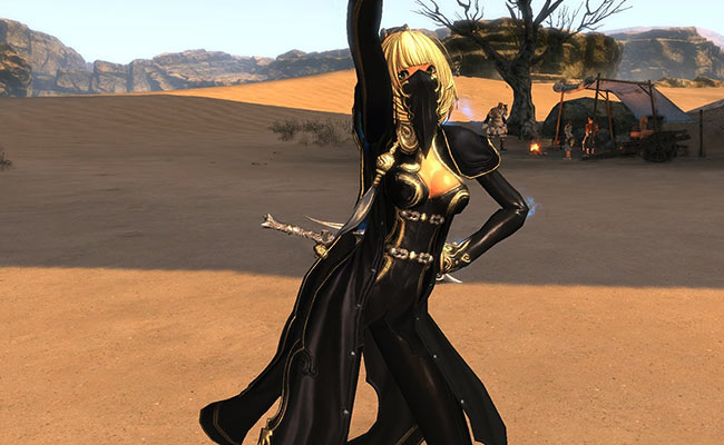 MMORPG Blood and soul